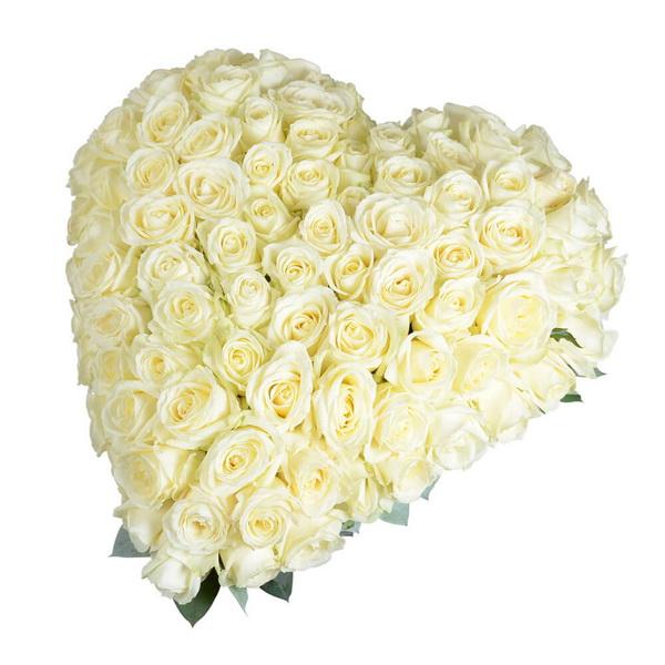 волосы сердце из белых роз фото иеговы проще согласится